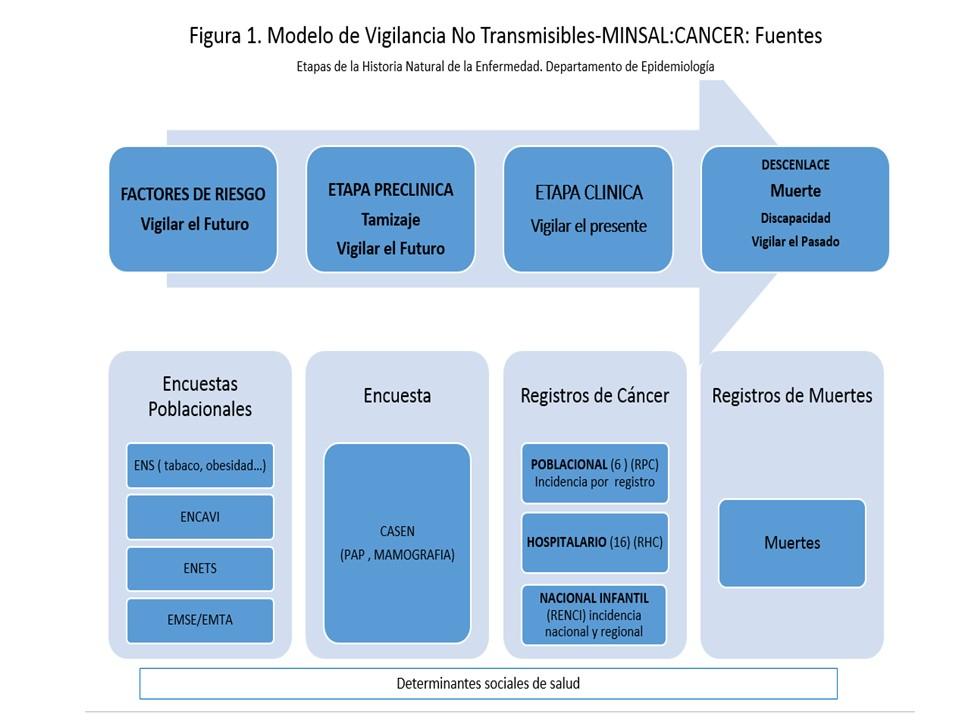 historia natural de la enfermedad CANCER